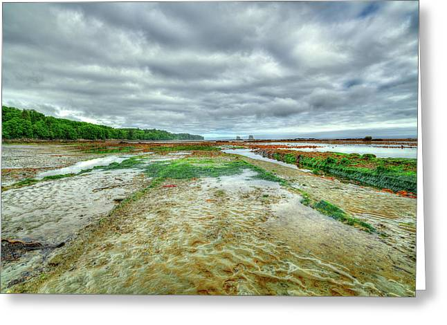 Extreme Low Tide At Bullman Beach Greeting Card