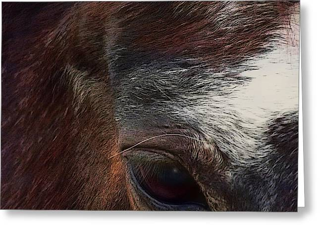 Greeting Card featuring the digital art Eye Of A Horse  by Shelli Fitzpatrick