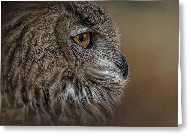 Eye Of Wisdom  Greeting Card