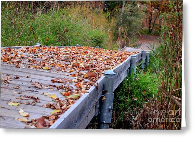 Fall Boardwalk Greeting Card