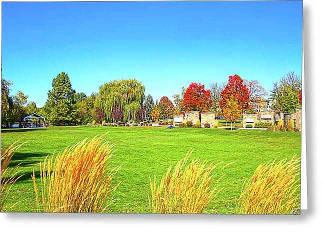 Greeting Card featuring the photograph Fall Colors In Boise, Idaho by Dart and Suze Humeston