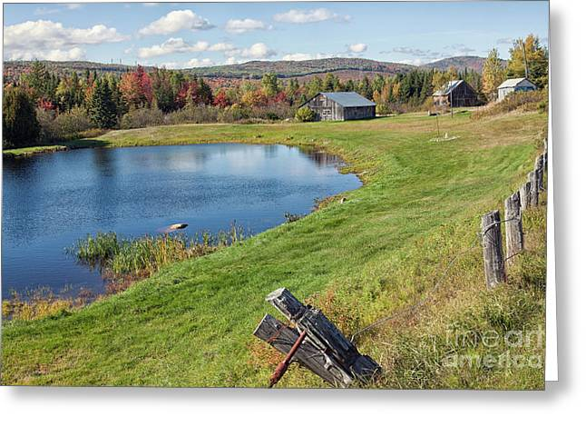 Greeting Card featuring the photograph Fall Colors In Port Au Persil by Tatiana Travelways