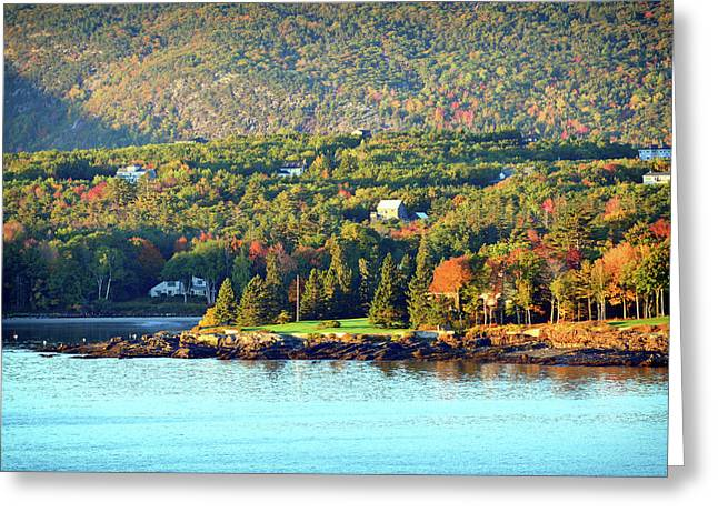 Greeting Card featuring the photograph Fall Foliage In Bar Harbor by Bill Swartwout Fine Art Photography