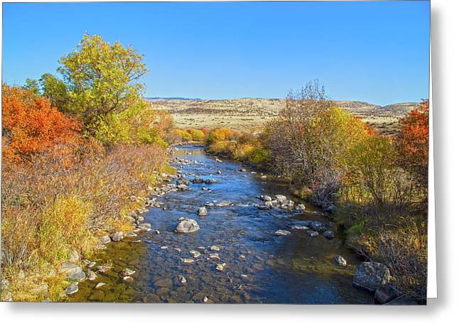 Greeting Card featuring the photograph Fall Foliage In Idaho by Dart and Suze Humeston