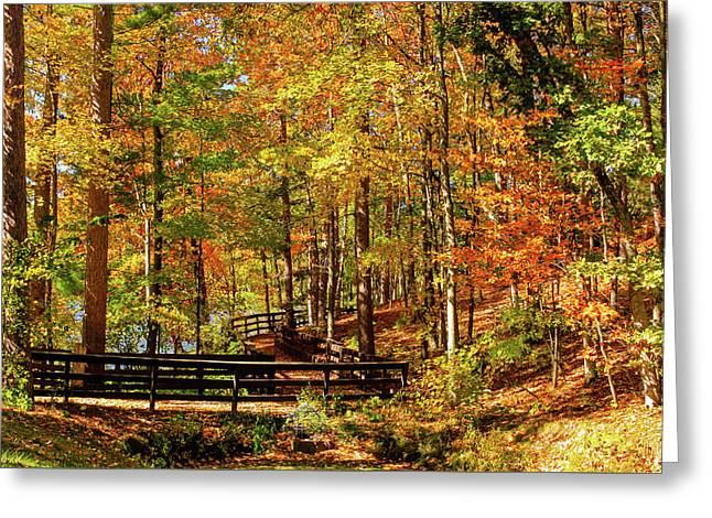 Fall Hike At Mirror Lake Greeting Card