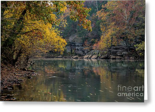 Greeting Card featuring the photograph Fall In Arkansas by Joe Sparks