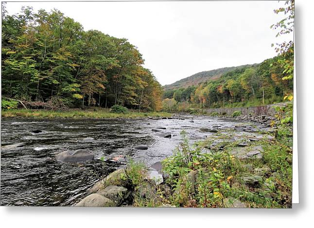 Fall In The Beaverkill Valley Greeting Card