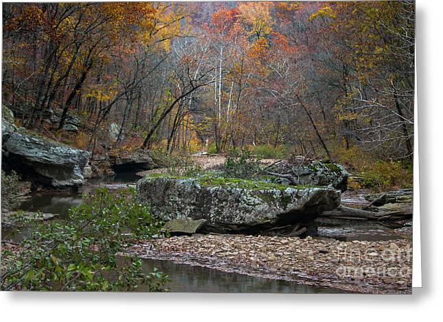 Greeting Card featuring the photograph Fall On The Kings River by Joe Sparks