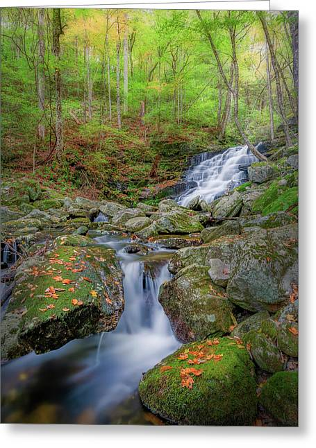 Greeting Card featuring the photograph Falls Brook 2 by Bill Wakeley