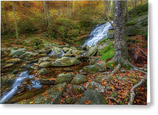 Greeting Card featuring the photograph Falls Brook Autumn by Bill Wakeley