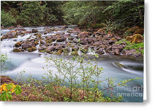 Greeting Card featuring the photograph Fast Water by Craig Leaper