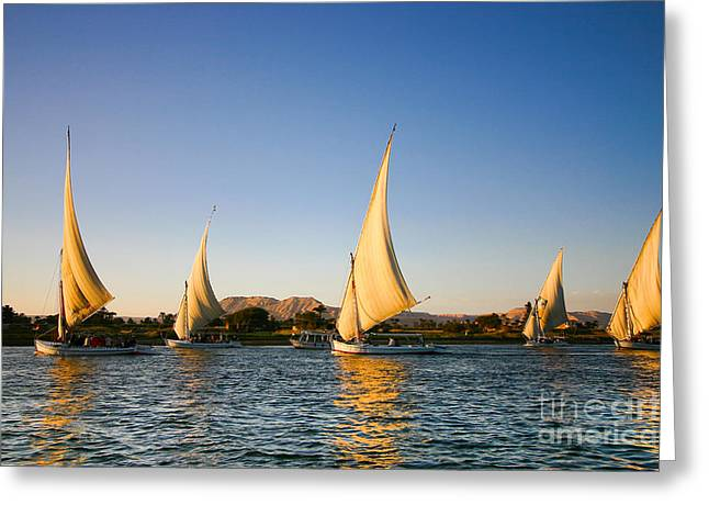 Felucca On The Nile River Greeting Card