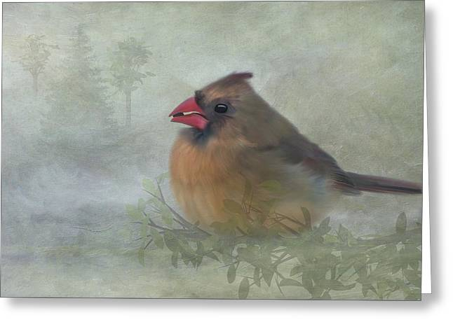 Female Cardinal With Seed Greeting Card