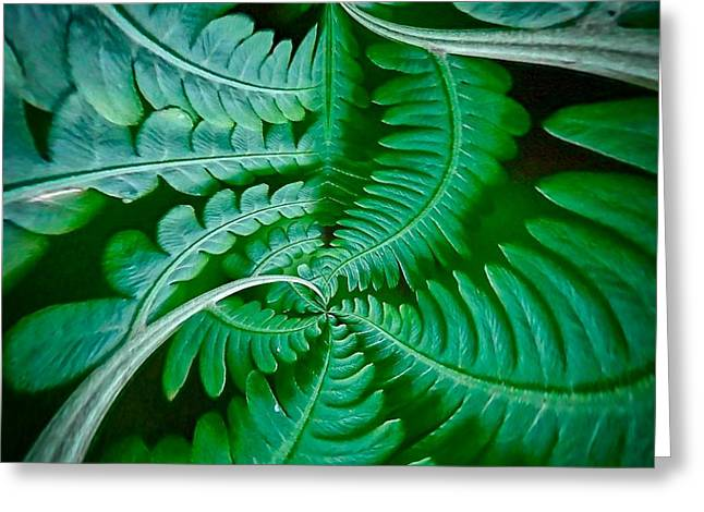 Fern Dance Greeting Card