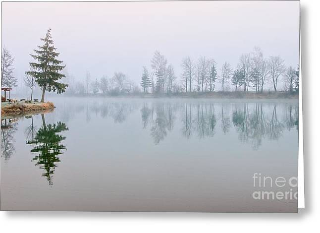 Fir Trees Reflecting In Still Lake Greeting Card