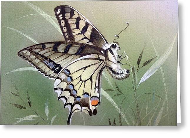 Fleeting Beauty.  Swallowtail Greeting Card