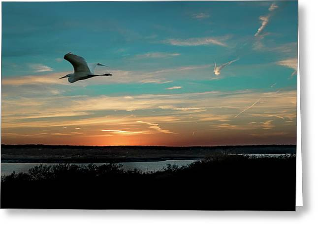 Flight To The Lake Greeting Card
