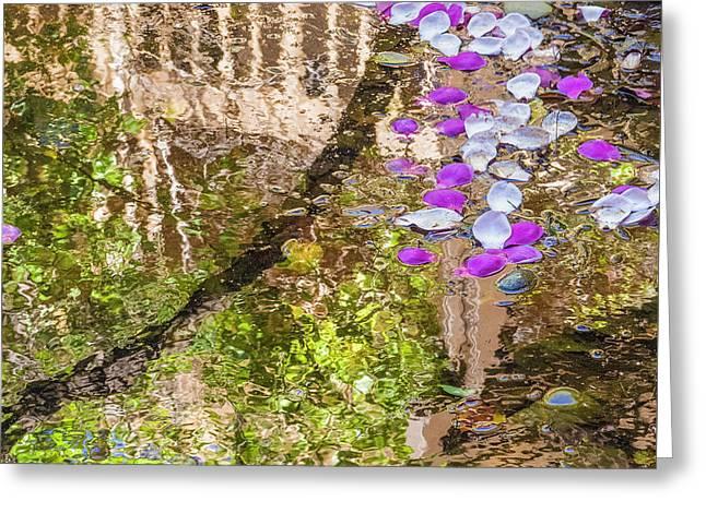 Floating Magnolia Petals Greeting Card