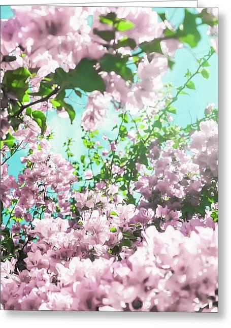 Floral Dreams Iv Greeting Card