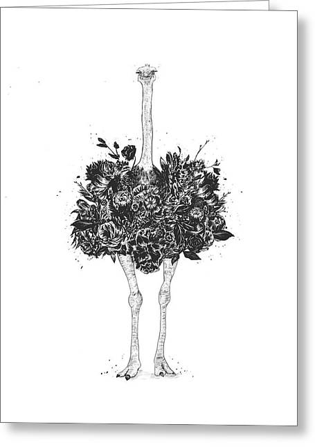 Floral Ostrich Greeting Card
