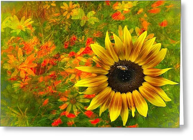 Flower Explosion Greeting Card
