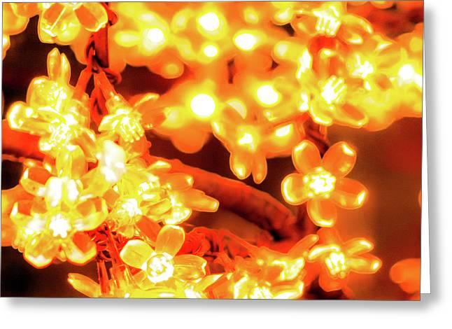 Flower Lights 5 Greeting Card