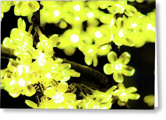 Flower Lights 6 Greeting Card