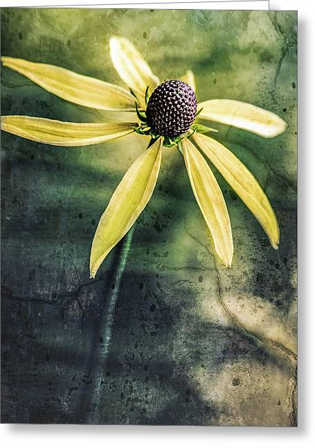 Greeting Card featuring the photograph Flower Texture by Michael Arend