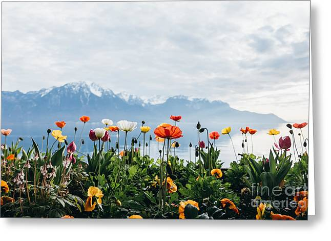 Flowers By The Lake In Montreux Greeting Card