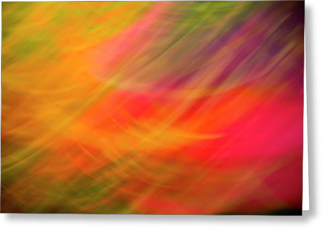 Flowers In Abstract Greeting Card