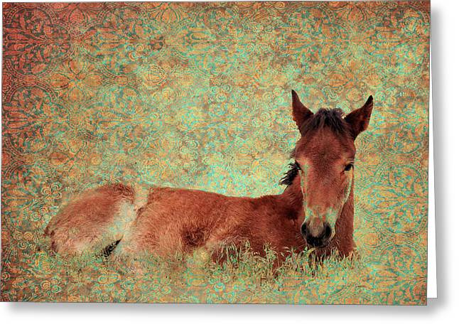 Flowery Foal Greeting Card