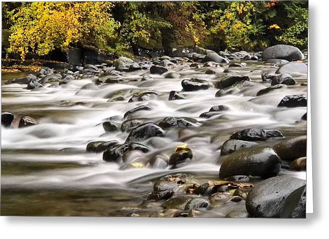 Flowing Molalla Greeting Card