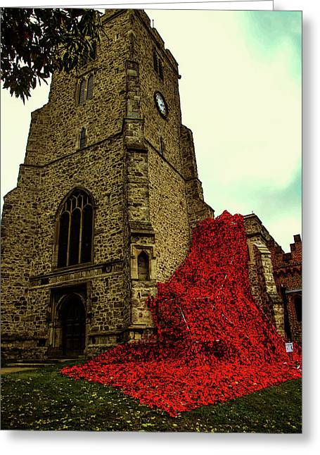 Flowing Poppies Greeting Card