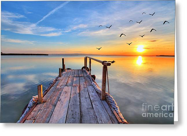 Flying By The Lake Greeting Card by Kesipun