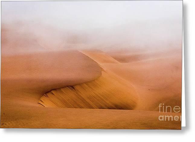 Foggy Namib Desert Greeting Card