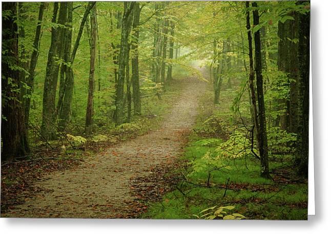 Foggy Path Greeting Card