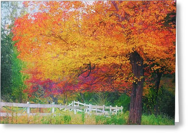 Foliage By The Farm Greeting Card