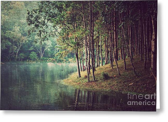 Forest Background ,vintage Style Greeting Card