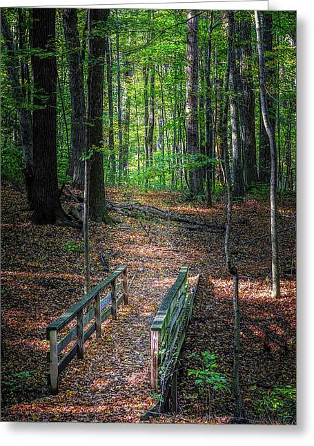 Forest Footbridge Greeting Card