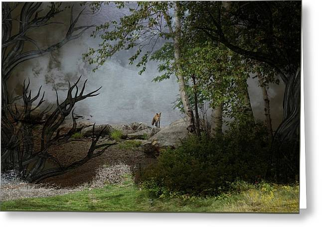 Fox On Rocks Greeting Card