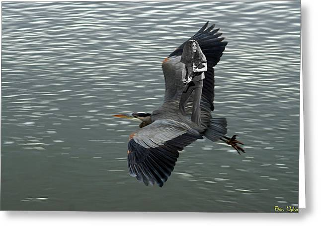 Greeting Card featuring the photograph Free Birds In Flight by Ben Upham