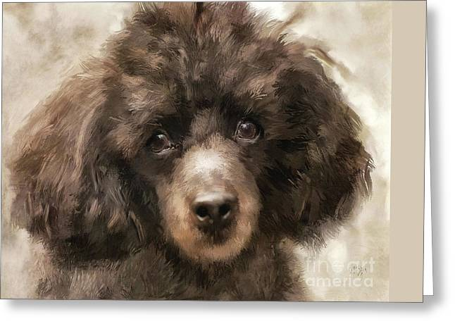 French Poodle Greeting Card