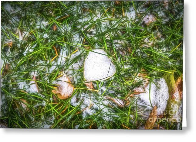 Greeting Card featuring the photograph Fresh Snow by Jon Burch Photography