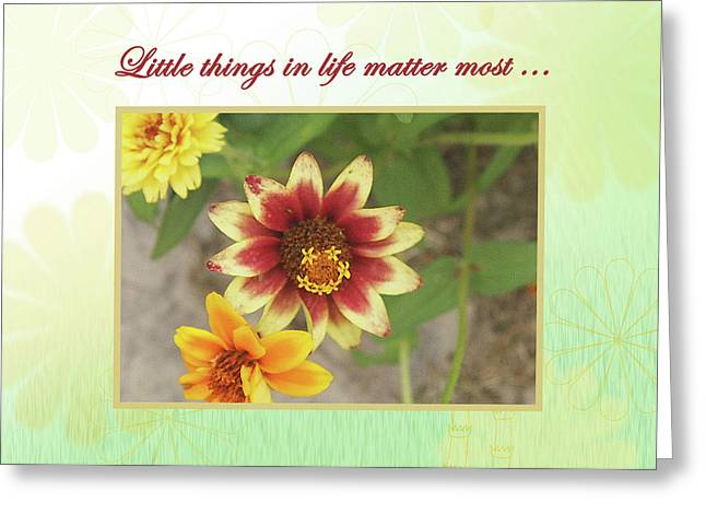 Friendship, A Smiling Indian Blanket Flower  Greeting Card
