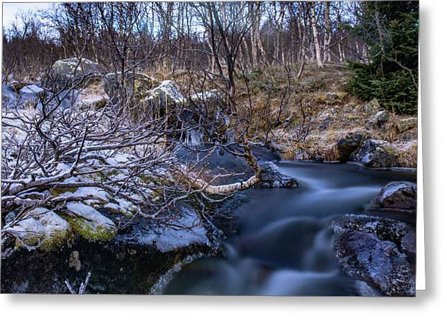 Frozen River And Winter In Forest Greeting Card