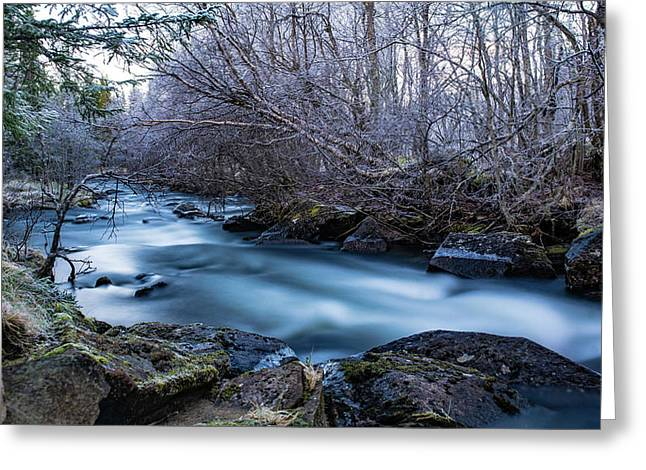 Frozen River Surrounded With Trees Greeting Card