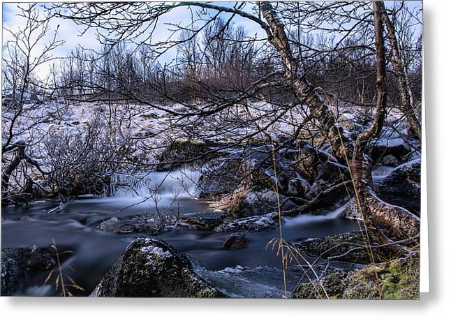 Frozen Tree In Winter River Greeting Card