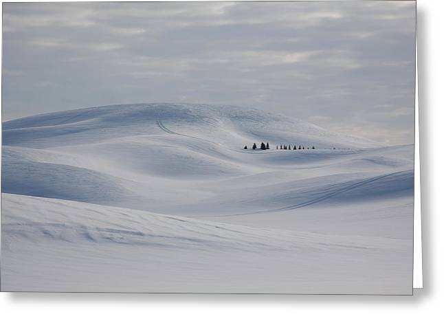 Frozen Winter Hills Greeting Card