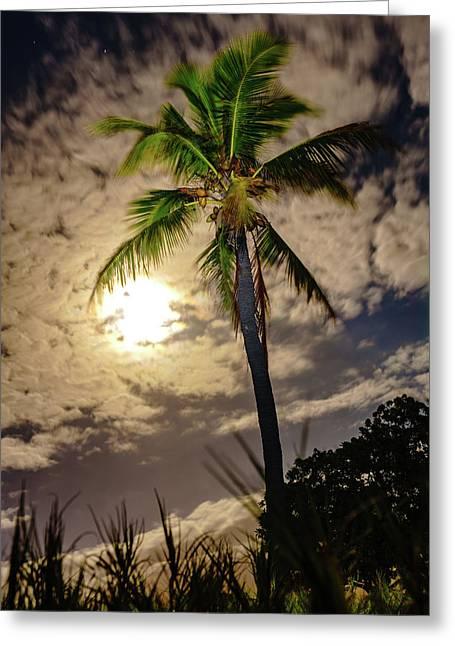 Full Moon Palm Greeting Card