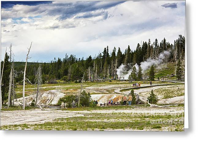 Greeting Card featuring the photograph Fuming Geysers In Yellowstone National Park by Tatiana Travelways